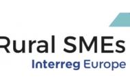 Reuniune a grupului de lucru in cadrul Proiectului RURAL SMEs